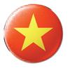 flag-vietnam-100
